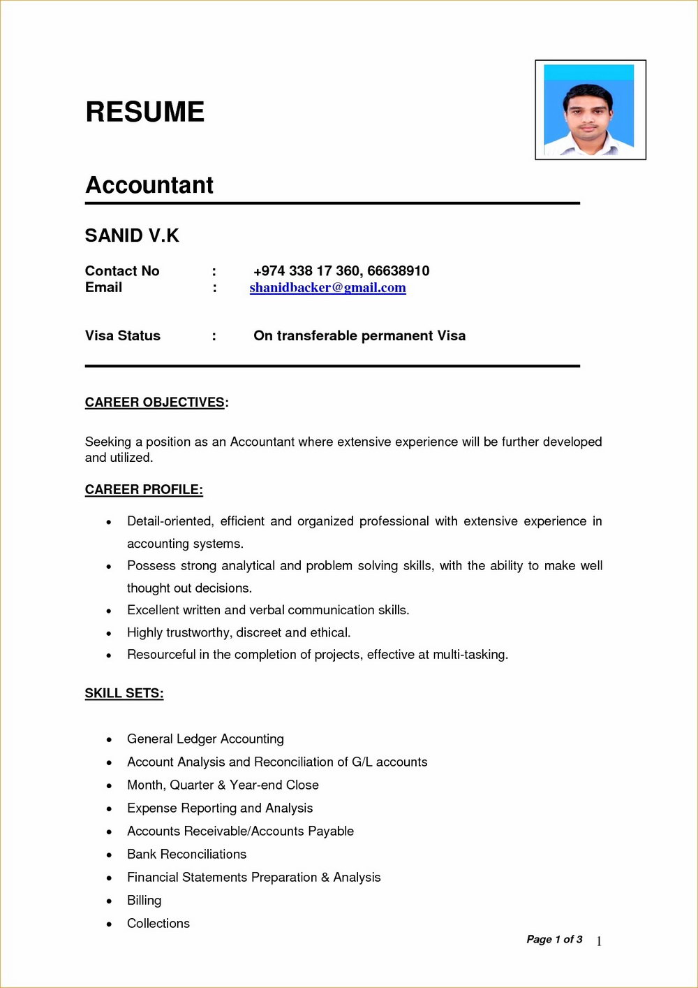 Simple Resume Format In Ms Word