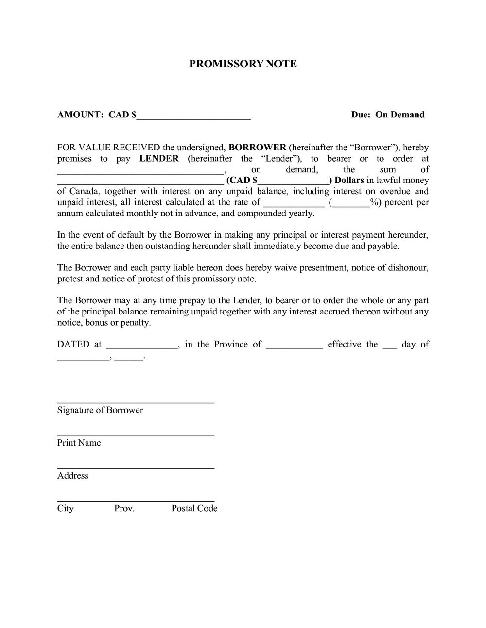 Promissory Note Format Indian Law