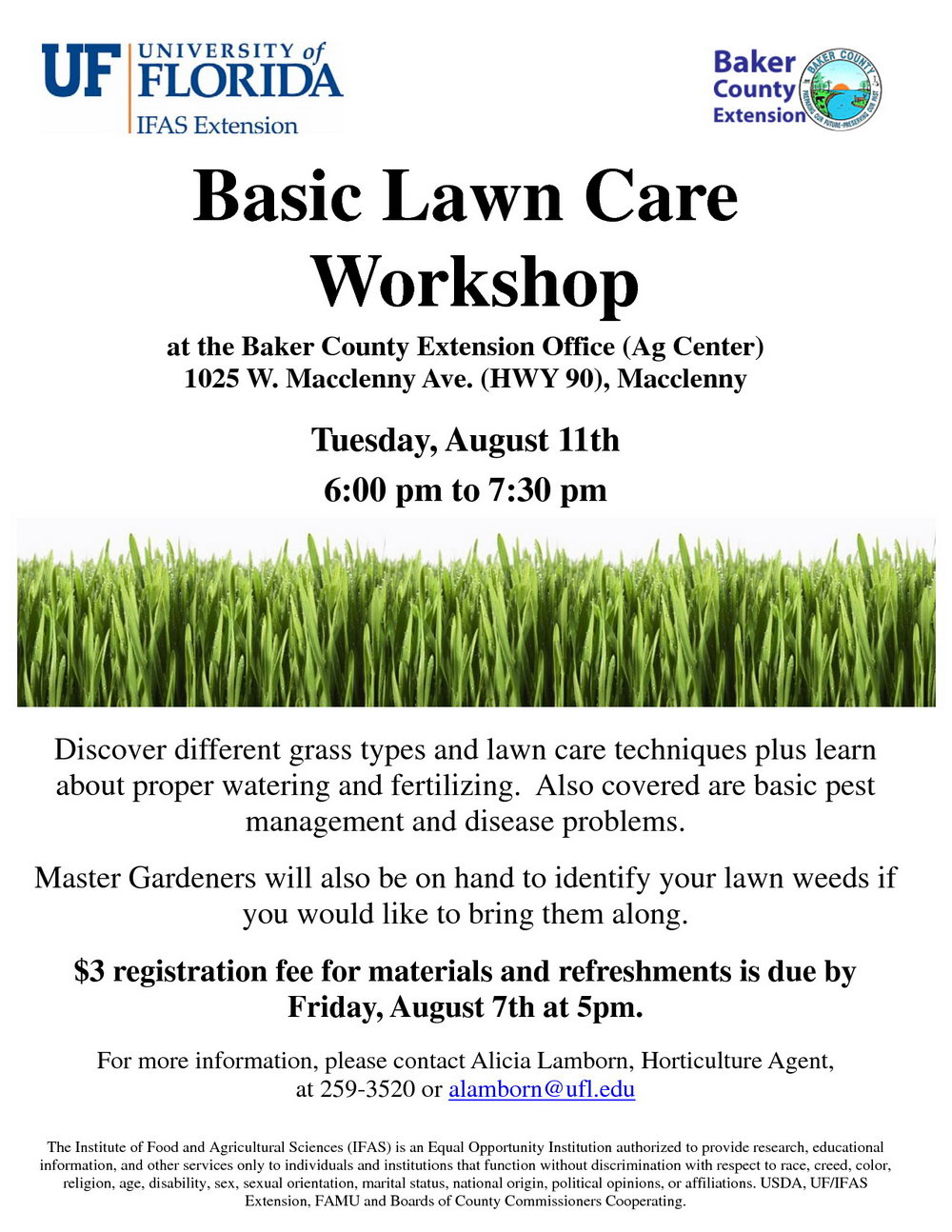 Lawn Care Flyer Template For Microsoft Word