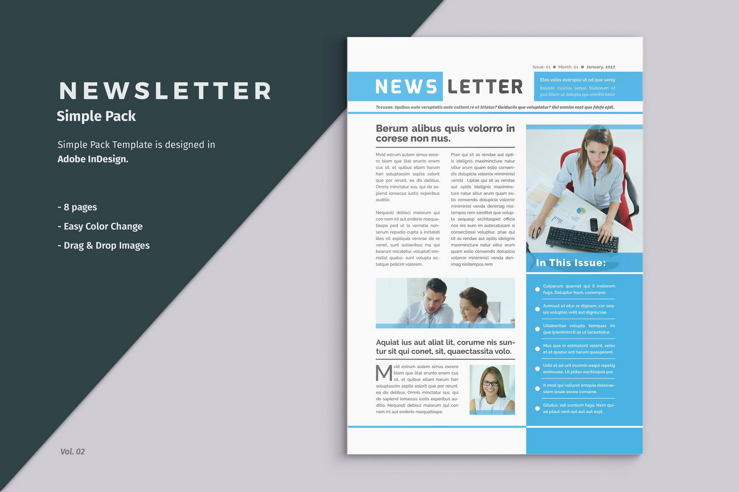 Newsletter Template Indesign