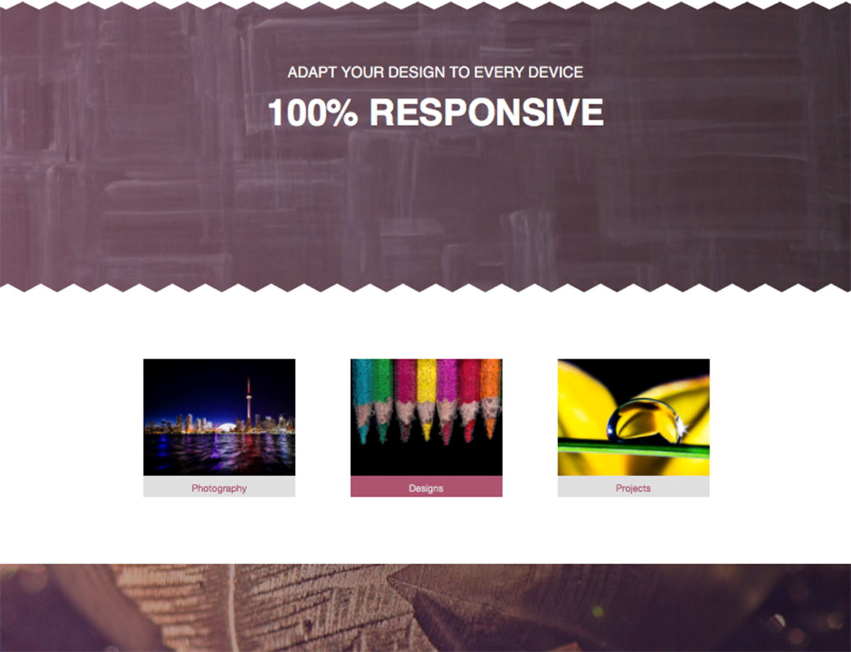 Free Responsive Muse Templates