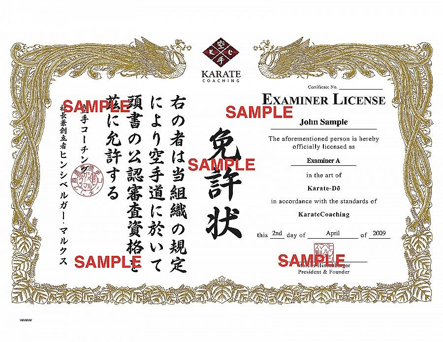 Black Belt Certificate Template Free