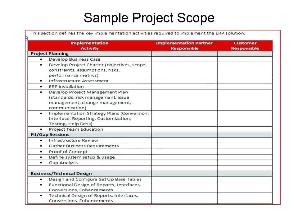 Erp Project Plan Example