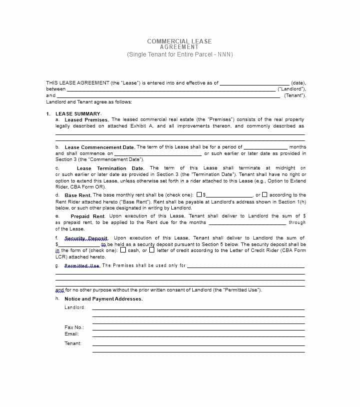 Commercial Real Estate Lease Template