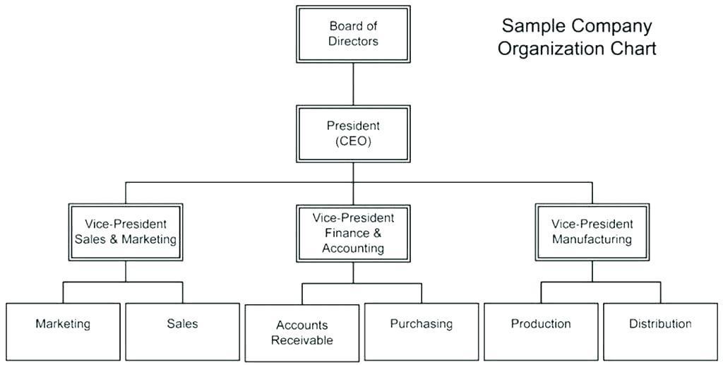 Construction Company Organizational Chart Template