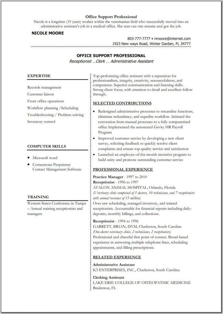 Download Functional Resume Template Microsoft Word