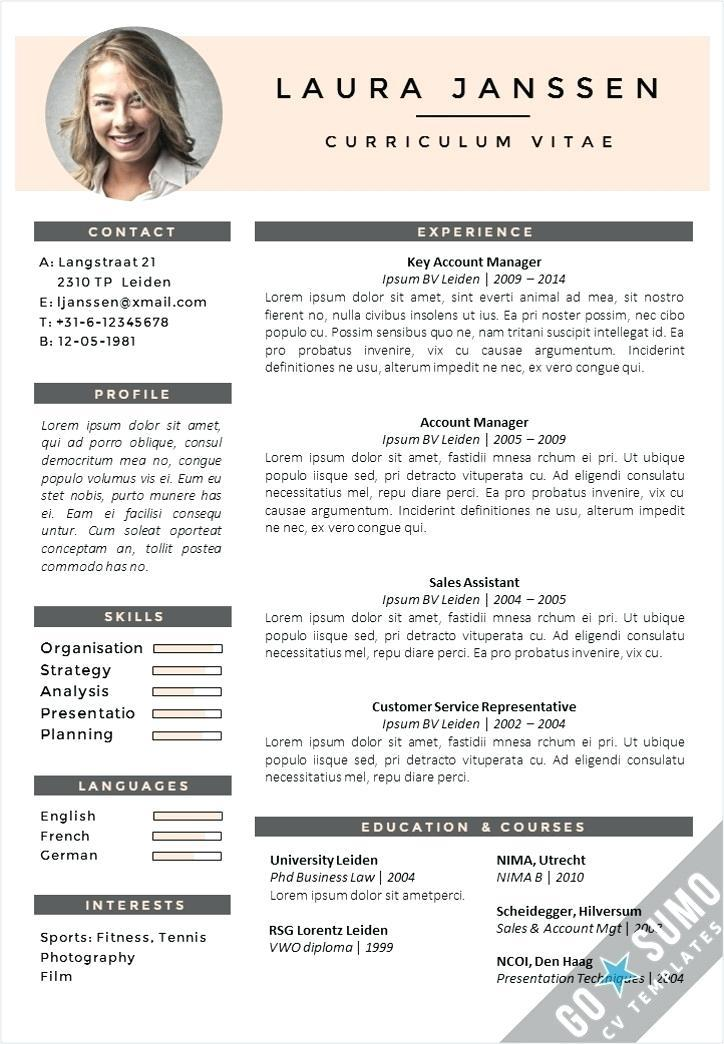 Executive Cv Template Free Download