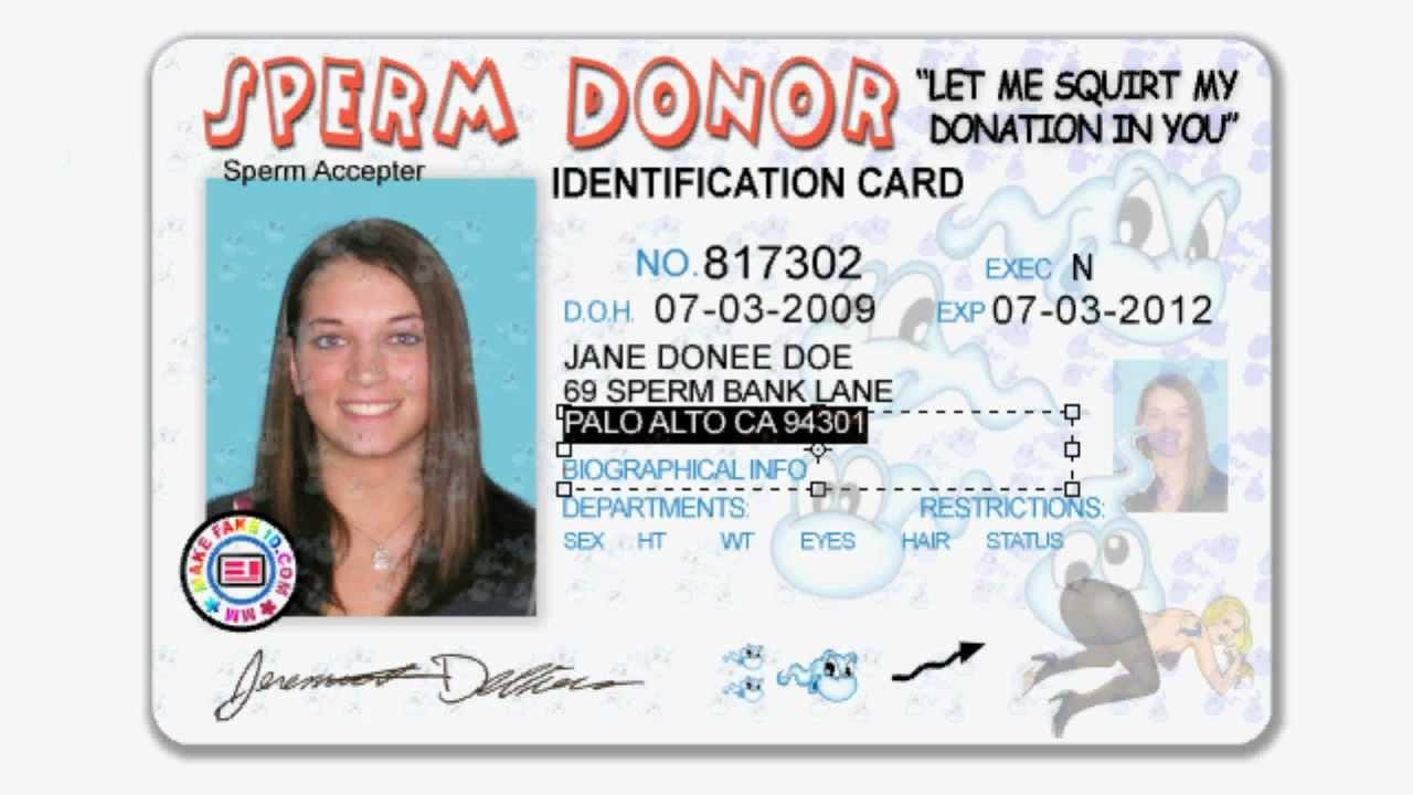 Fake Florida Driver's License Template