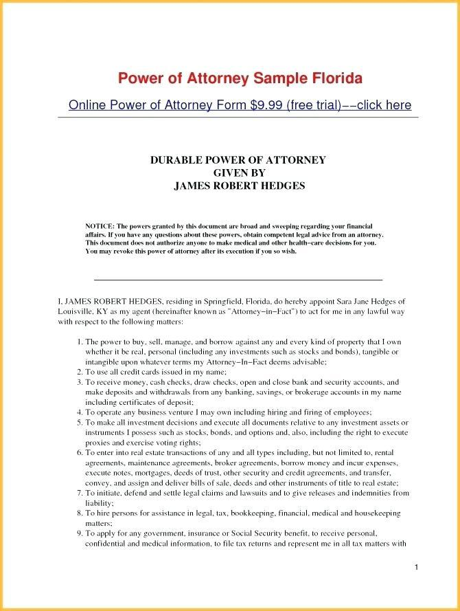 Financial Power Of Attorney Document