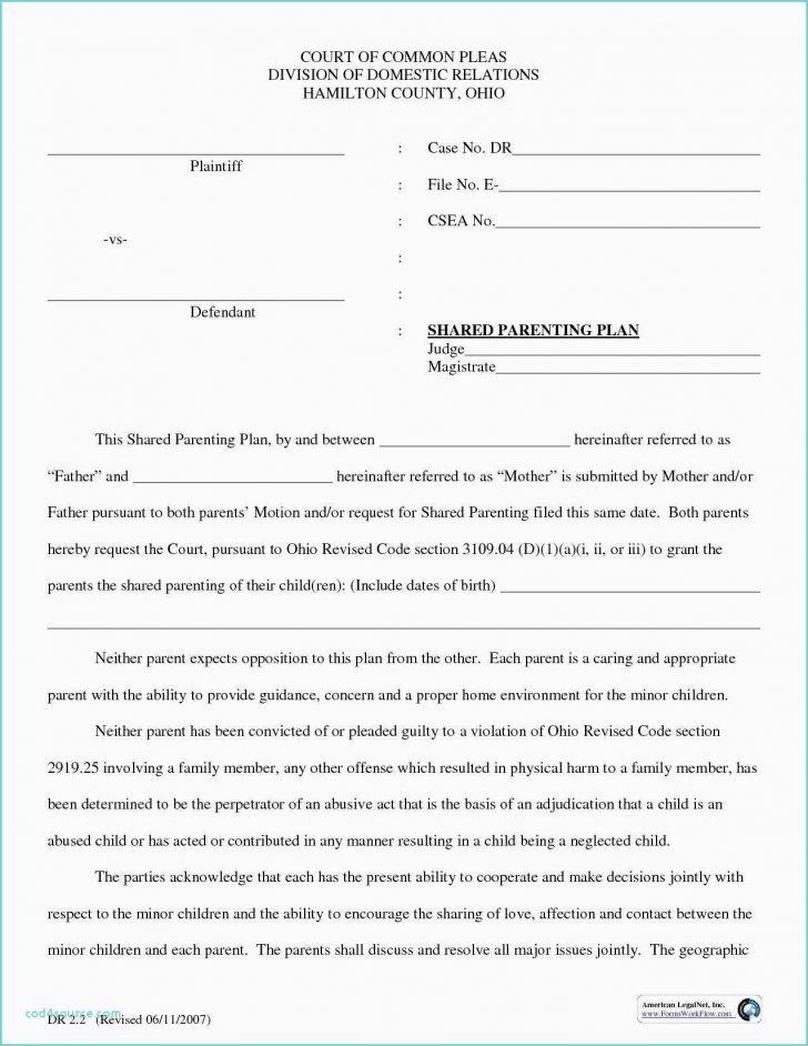 Free Parenting Plan Template California