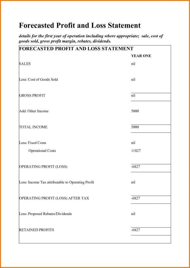 Free Template For Profit And Loss Statement For Self Employed