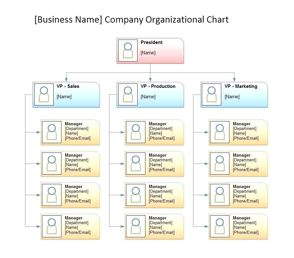 Hotel Organization Chart Template