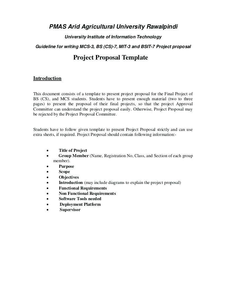 Information Technology Audit Proposal Template