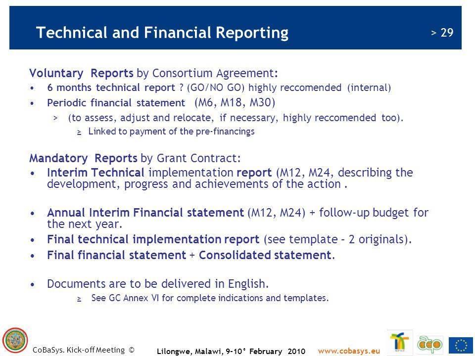 Interim Financial Report Template