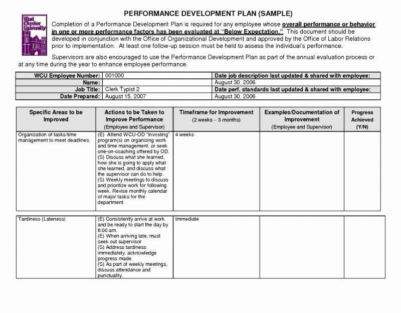 Job Performance Improvement Plan Example