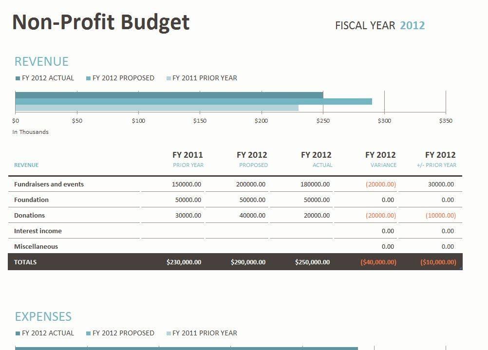 Non Profit Spreadsheet Template