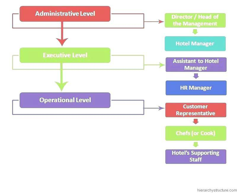 Organisational Chart Template Pages