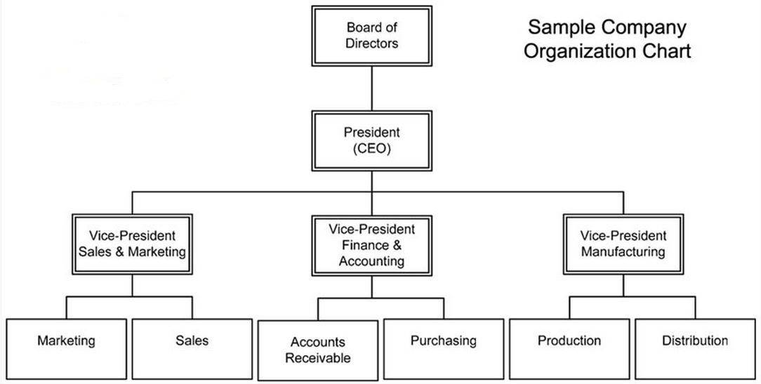 Organizational Structure Chart Template