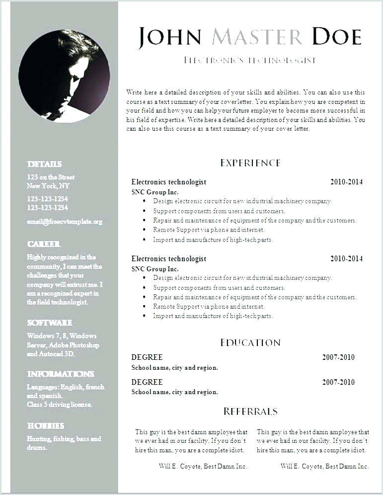 Professional Cv Template Word Document