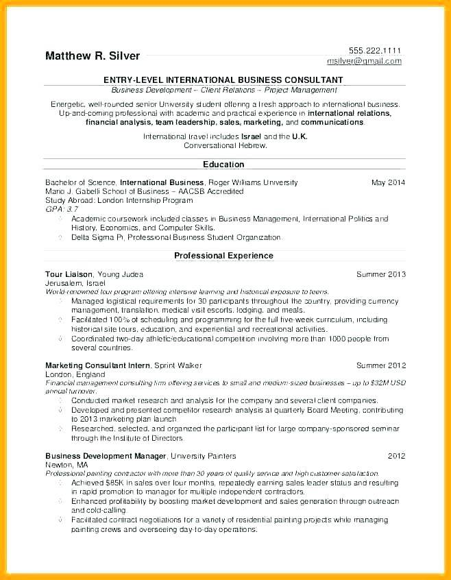 Project Manager Resume Template 2017