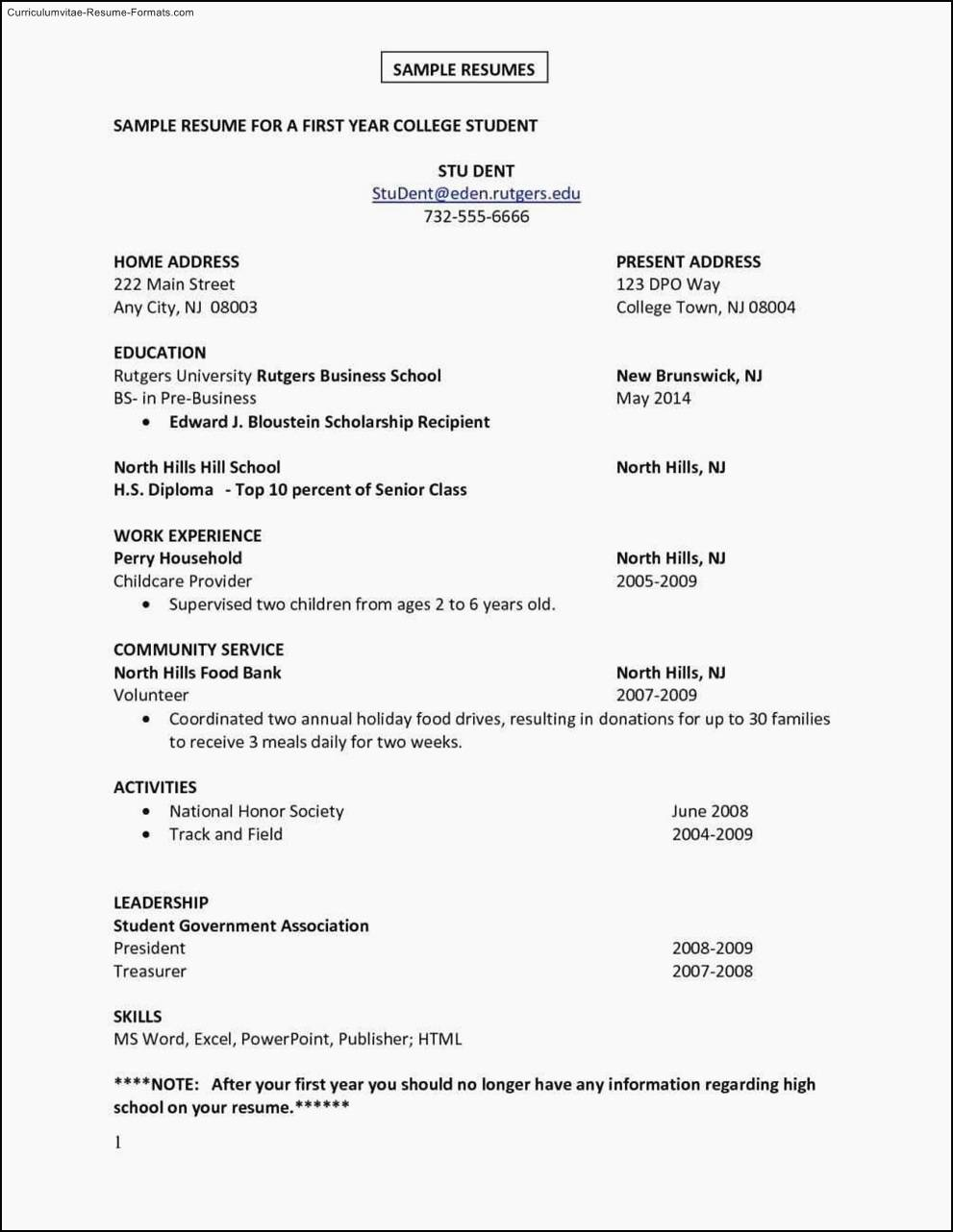 Resume Template For First Job Free