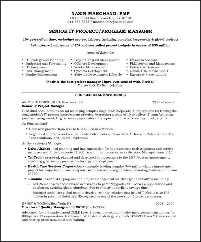 Resume Templates For Senior Project Manager