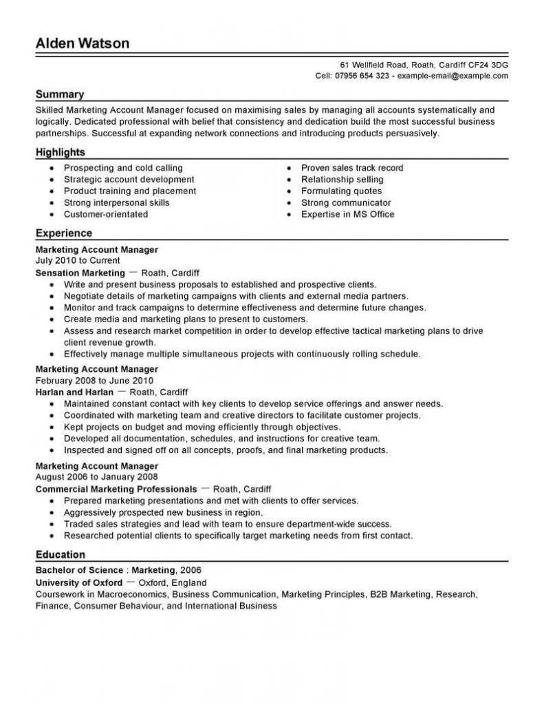 Sales Account Manager Resume Templates