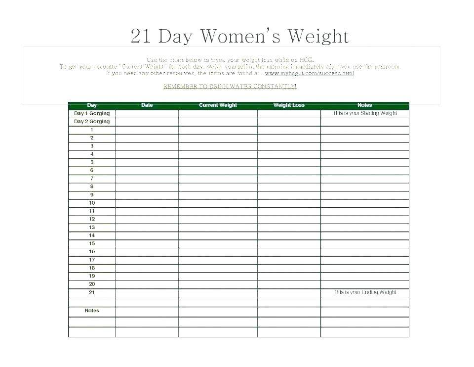 Sales Call Tracking Sheet Excel