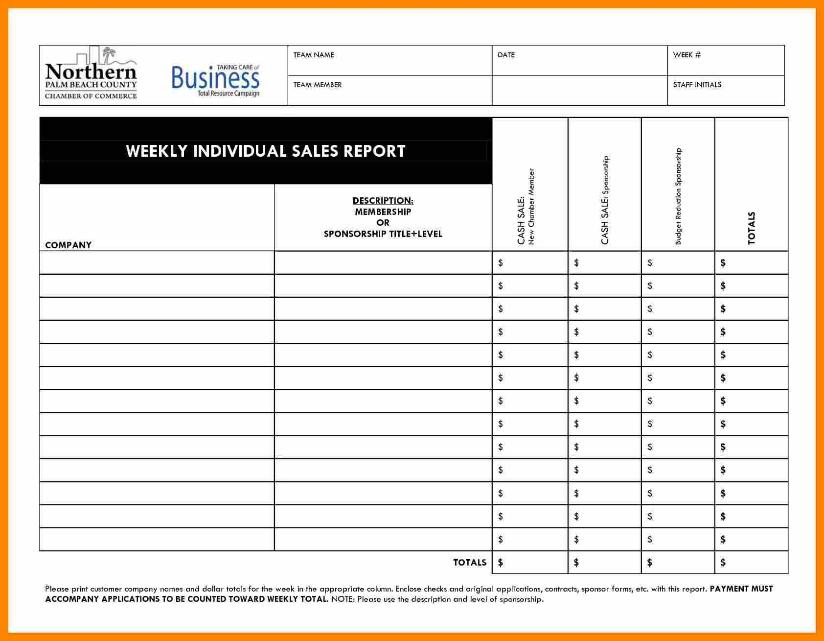 Weekly Activity Report Template Download