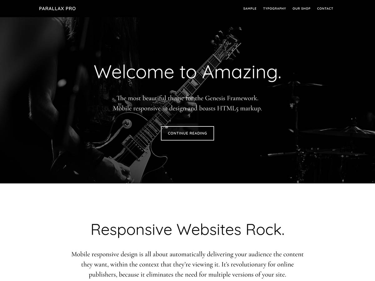 Wordpress Theme Parallax Pro